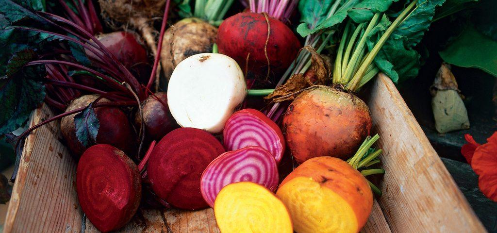 Root vegetables. Photo © Skånska Matupplevelser